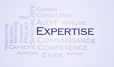 Commissariat aux comptes et audit